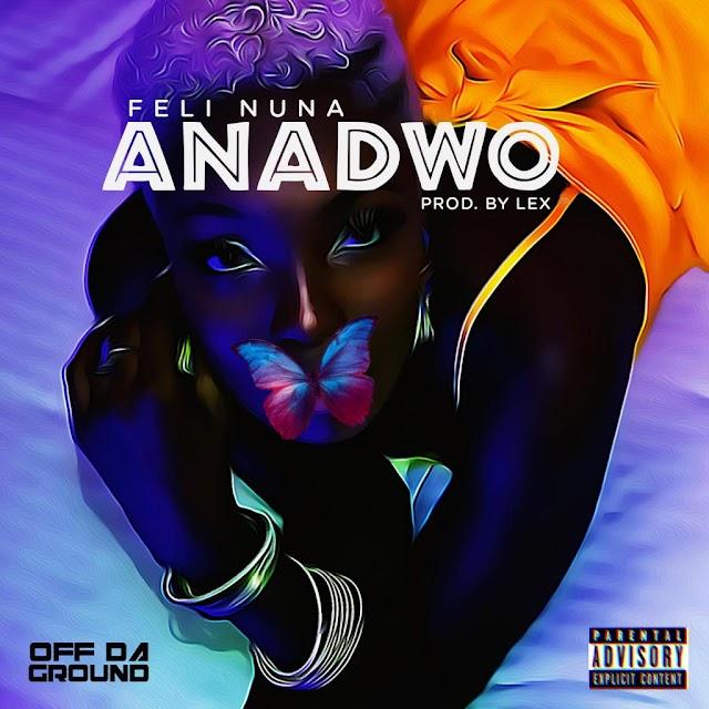 Listen: Feli Nuna – Anadwo (Prod By Lex)