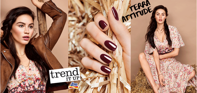 trenditup_terra_attitude_header
