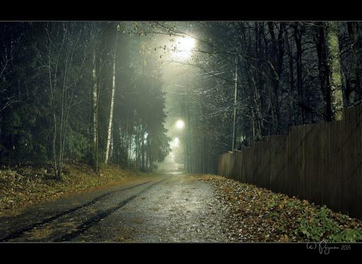 october_rain_by_pajunen-d6rwrdi-2013-10-27-08-54.jpg