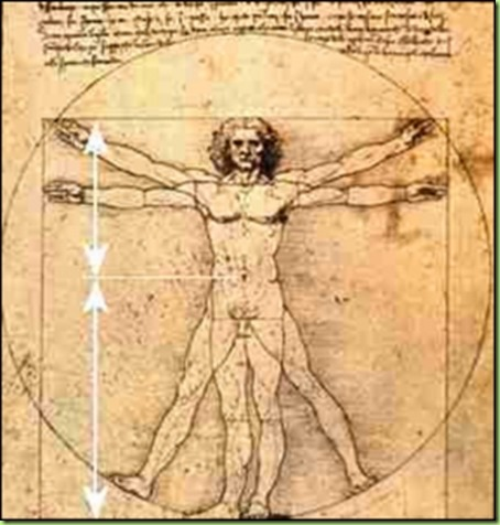 golden ratio da vinci - Copy