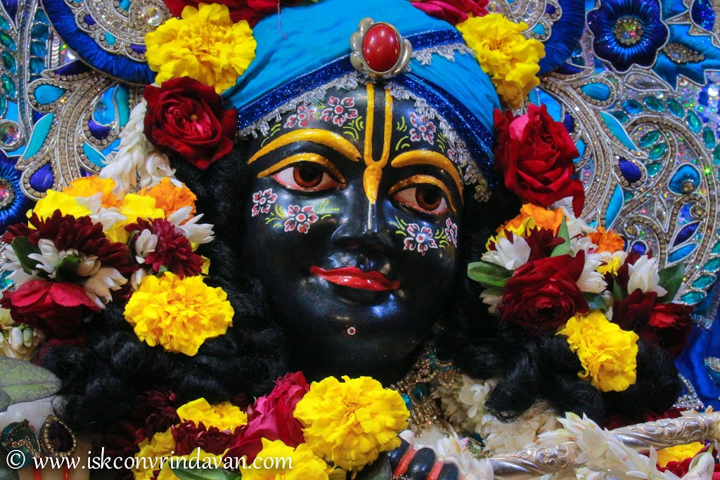 ISKCON Vrindavan Deity Darshan 10 Jan 2017 (8)
