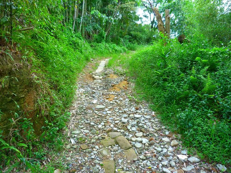 Taipei. Si Shou shan, en plein coeur de Taipei. Accès par un autre chemin moins emprunté. - P1240875.JPG