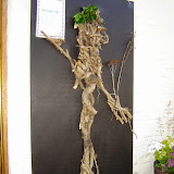 ScarecrowFestival2008