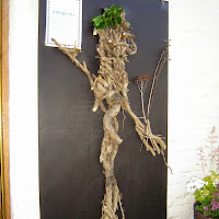Scarecrow Festival 2008