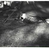 n026-026-1968-tabor-szigliget.jpg