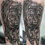tiger - Lion Tattoos & Tiger Tattoo