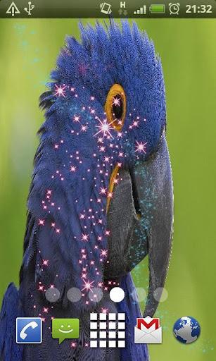 Blue Parrot Live Wallpaper