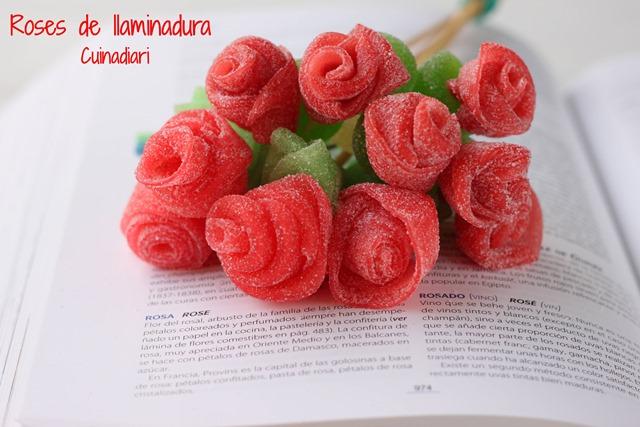 6-5-Roses cintes llaminadura cuinadiari-ppal2