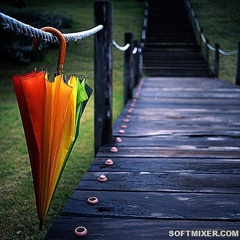 Вторая жизнь старого зонта