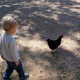 Blessington Farms - 116_5134.JPG