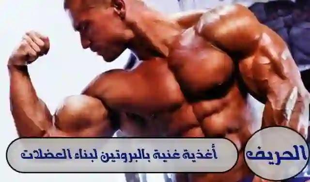 أغذية غنية بالبروتين لبناء العضلات