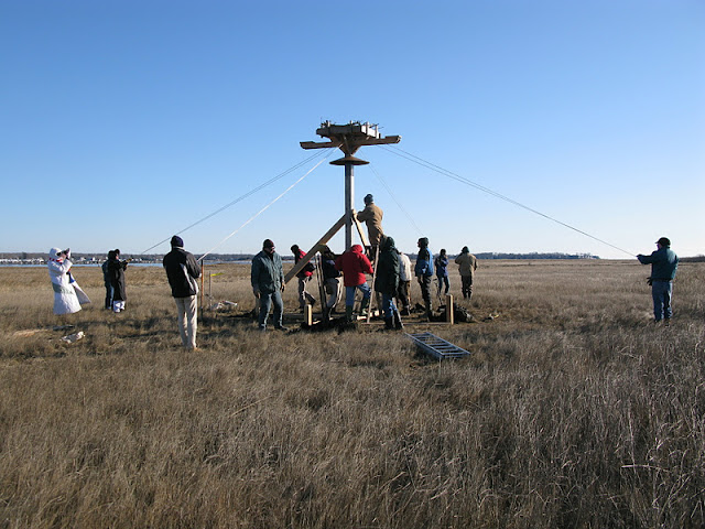 Osprey Platform - Jan 15, 2012 - IMG_8617.JPG