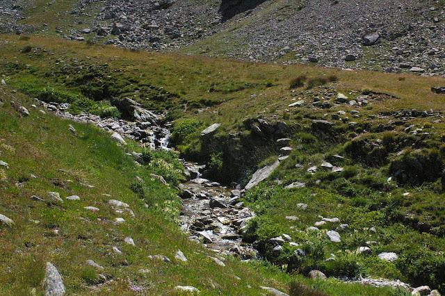 Biotope de Parnassius sacerdos. Bergerie supérieure de Mary (Maurin), 2420 m. 12 août 2009. Photo : J.-M. Gayman