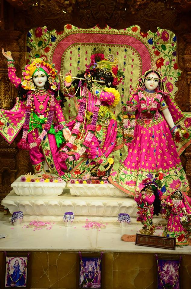 ISKCON GEV Deity Darshan 08 Jan 2017 (21)