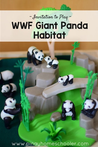 Small World Play: Giant Pandas
