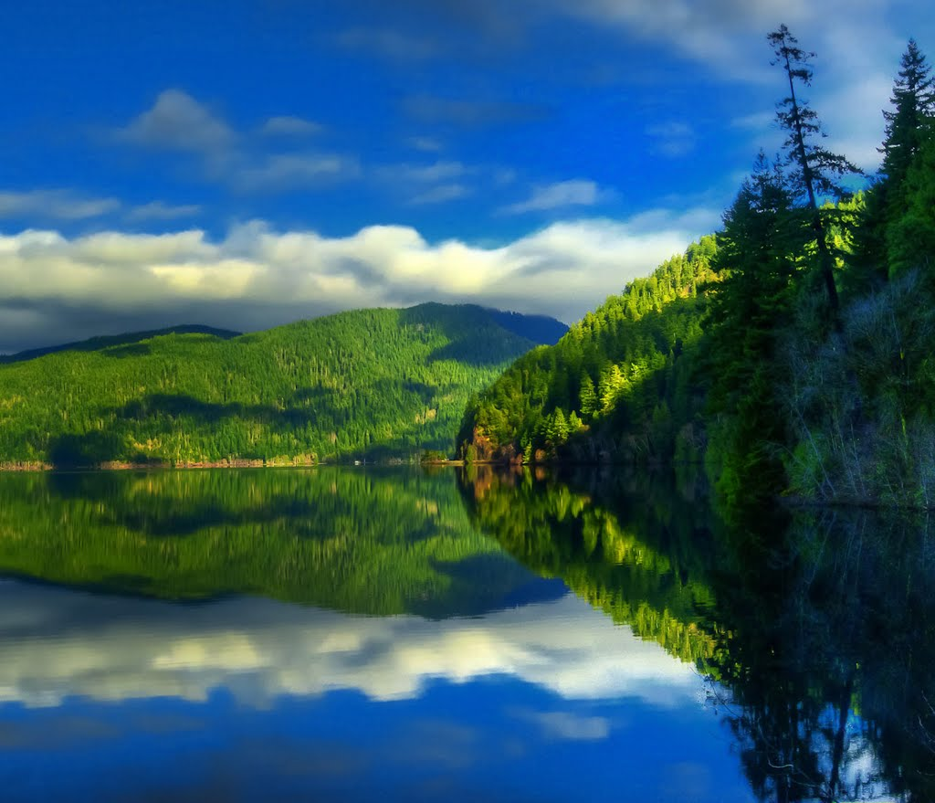 """""""Lake Crescent Reflection"""" by Tim Snyder"""