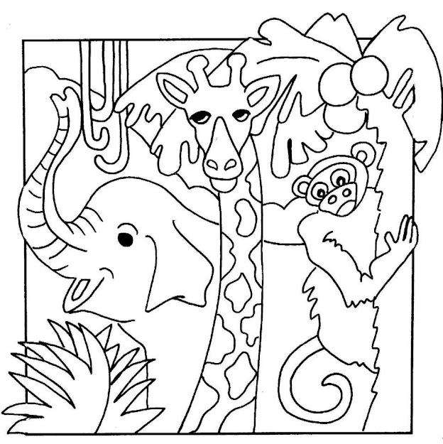 Jungle Safari Coloring Pages  Images Of Animal Coloring Pages Jungle   Gallery  Extracoloring