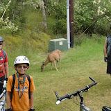 San Juan Bike Trip - CIMG1841.JPG