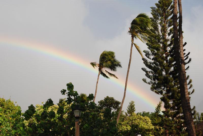 hawaii - 49.jpg
