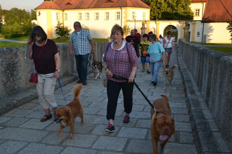 On Tour in Tirschenreuth: 30. Juni 2015 - DSC_0122.JPG