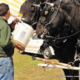 OLGC Harvest Festival - 2011 - GCM_OLGC-%2B2011-Harvest-Festival-54.JPG