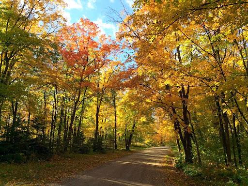Maplelag driveway near Loon Return