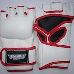MMA-Glove-white.jpg
