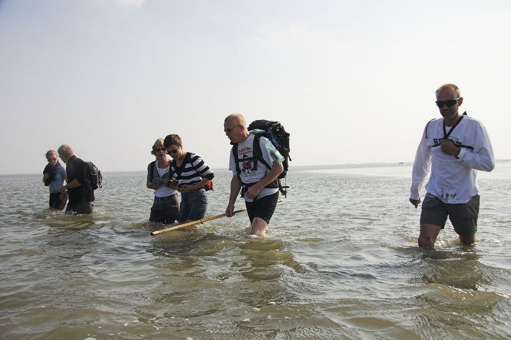 wadden-sea-hiking-4