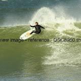 _DSC8950.thumb.jpg