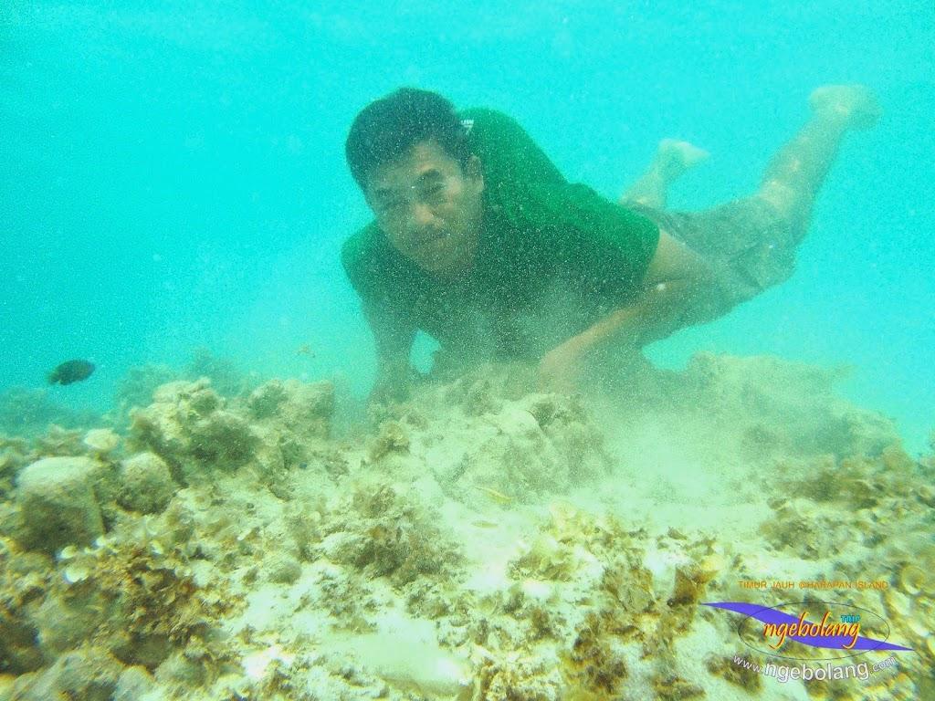pulau harapan timur jauh 29-30 nov 2014 caklung 18