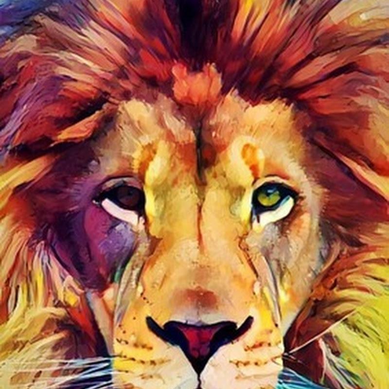 Imágenes de leones para fondo ipod y telefono