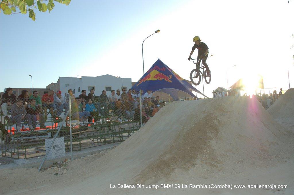 Ballena Dirt Jump BMX 2009 - BMX_09_0131.jpg