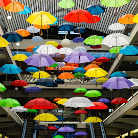 Up To the Sky by Jacques Taillefer - Uncategorized All Uncategorized ( market, floating, umbrellas, colorful, suspended,  )
