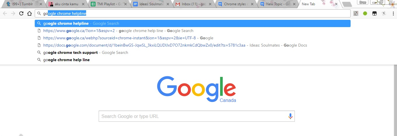 Chrome style is different  Is this Chrome Canary? - Aide