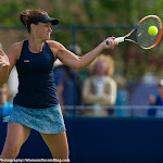 Casey Dellacqua - AEGON International 2015 -DSC_2543.jpg