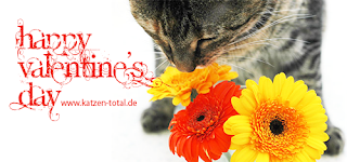 katzen-happy-valentine.png