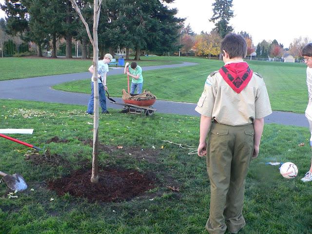 Tree Planting November 2010 - 110410%2B045.JPG