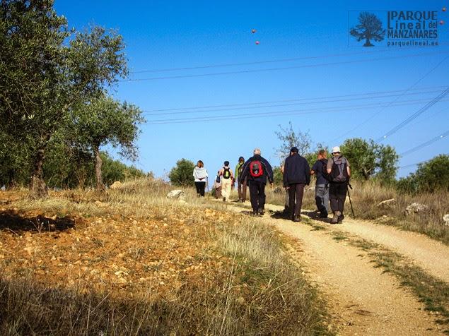 Camino arriba por la vía pecuaria