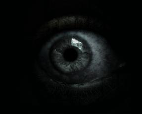 Fear[5]