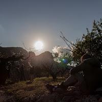 Alineacio Solar Forada 2016-21.jpg