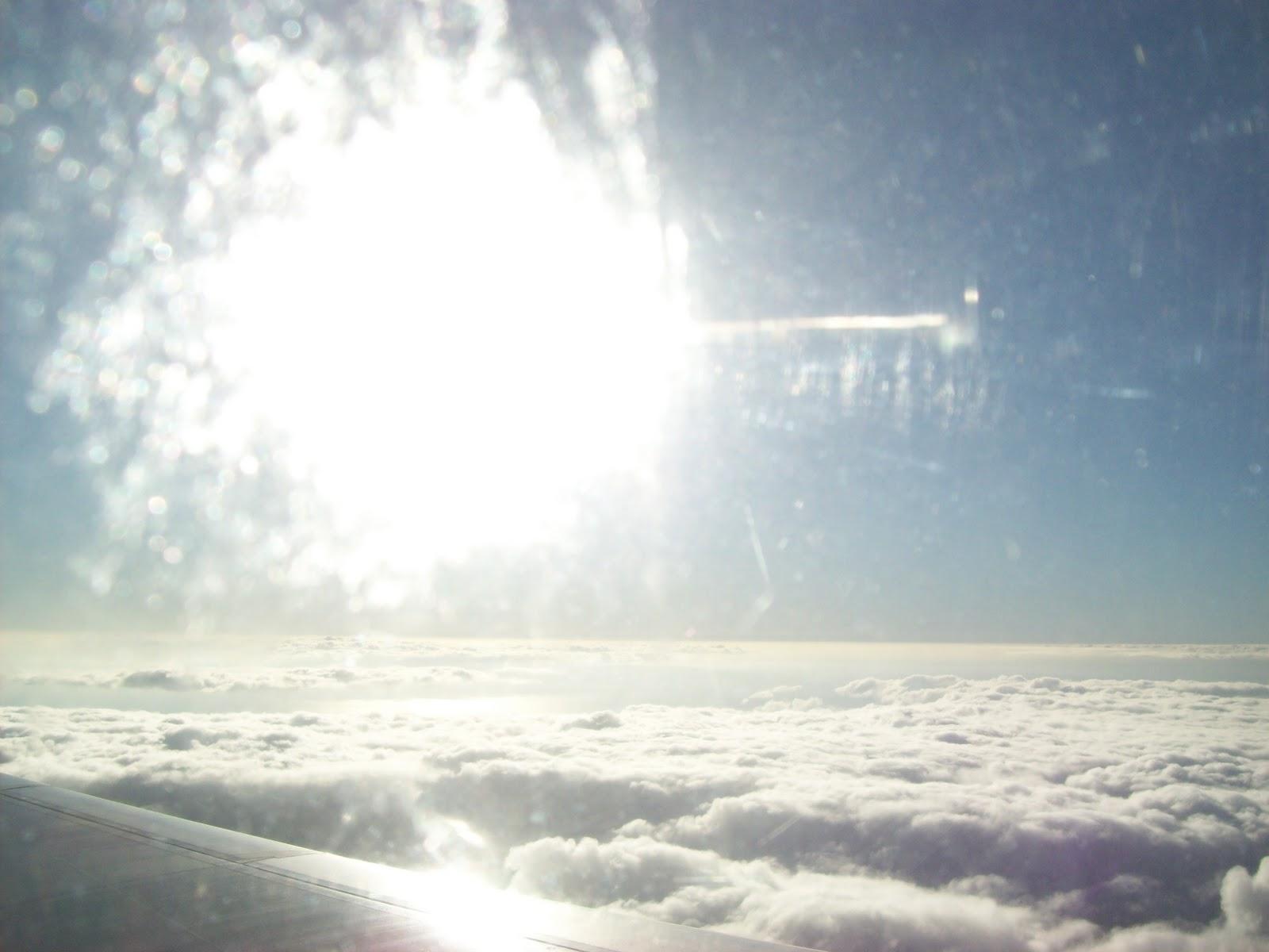 Hawaii Day 8 - 100_8202.JPG