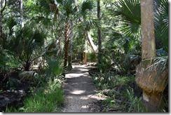 Trail view-3