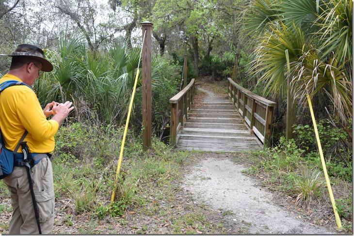 Suspension bridge-2