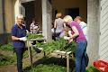 blog.ksf-2013.de / Hofstaat Dekotrupp