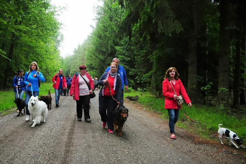 20130623 Erlebnisgruppe in Steinberger See (von Uwe Look) - DSC_3650.JPG