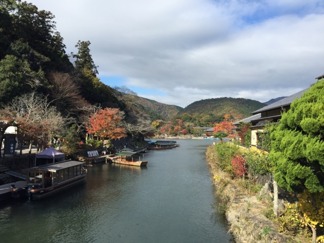Gorgeous fall colours in Arashiyama, Kyoto