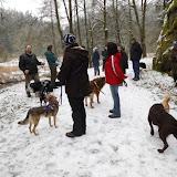 01. Januar 2016: Neujahrswanderung ins Waldnaabtal - DSCI0144.JPG