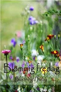 Bloggutmaning Blommig fredag