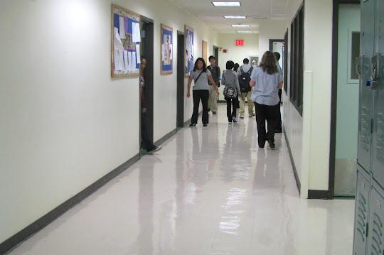 Brooklyn College Academy Insideschools Org