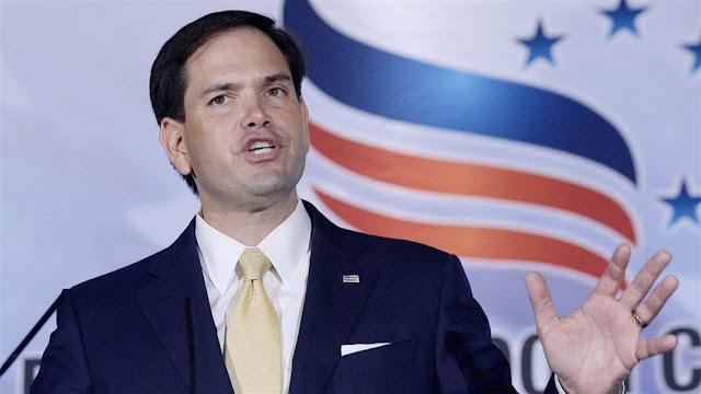 Run, Rubio, Run, say Republicans
